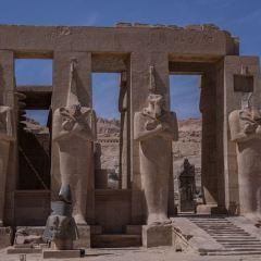 拉美西斯神廟用戶圖片