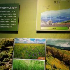 森林博物館用戶圖片
