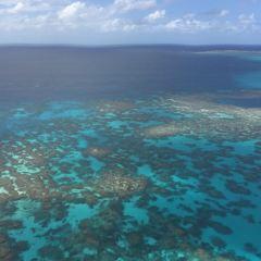 大冒險號大堡礁遊船用戶圖片