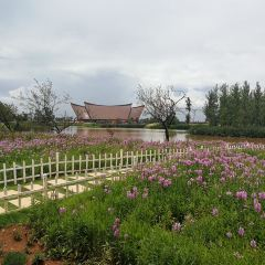 Gudianjingpin Wetland Park User Photo