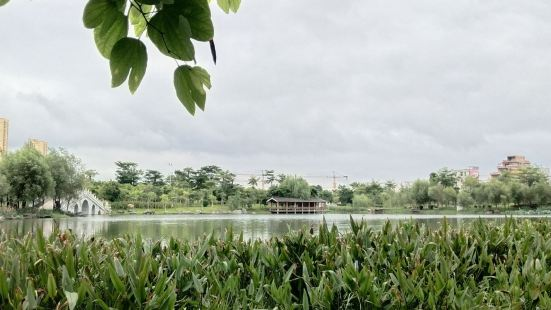 Binyang Fenghuanghu Park