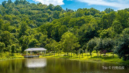 Dayun Natural Park