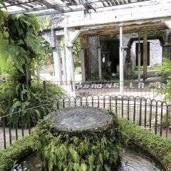 Paronella Park User Photo