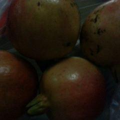 Malatapay Market User Photo