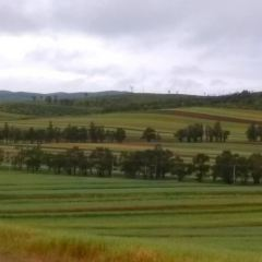 格根塔拉草原用戶圖片