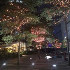 Taikoo Hui User Photo