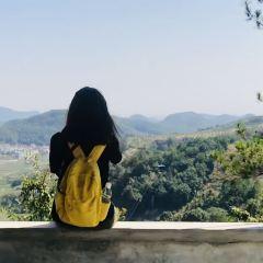 타오화우 여행 사진