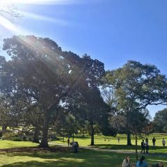 Flagstaff Gardens User Photo