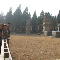 中岳景區用戶圖片