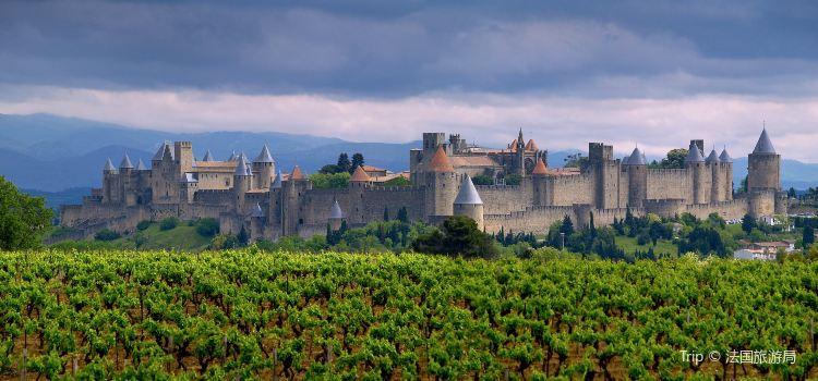 Carcassonne Castle1