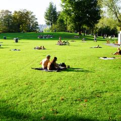 Ufschotti Park User Photo
