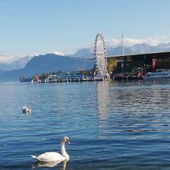 Lake Luzern User Photo