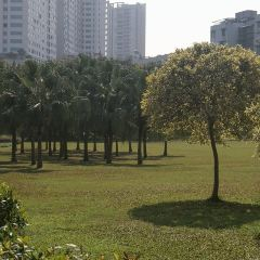 Dongfeng Park User Photo
