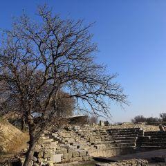 Roma Hamami User Photo