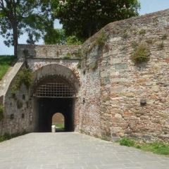 Le mura di Lucca User Photo