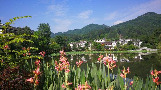 Guizhou Meitanxiang Shan Chabo Park