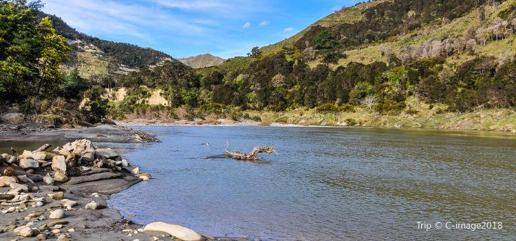 Whanganui National Park1