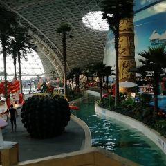 Golden Sun Hot Spring Resort User Photo