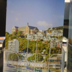 Wellington i-SITE Visitor Information Centre User Photo
