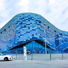 Iceberg Skating Palace User Photo