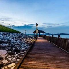 Changi Beach Boardwalk User Photo