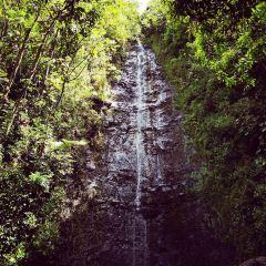 Waimea Falls Park User Photo