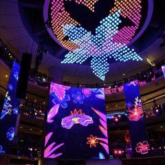 空中交響樂用戶圖片