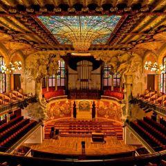 加泰羅尼亞音樂宮用戶圖片