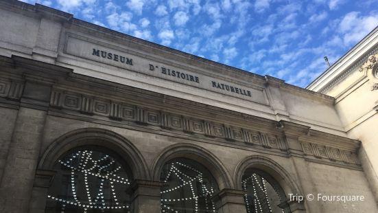 南特自然歷史博物館