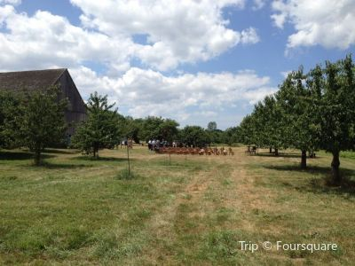 Hurd Orchards