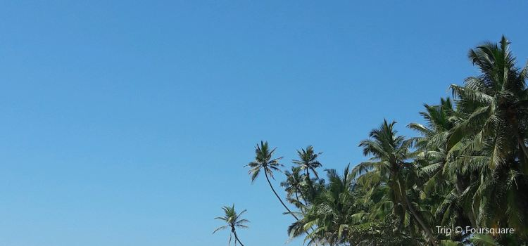 Dalawella Beach3