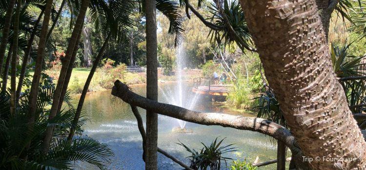 Hervey Bay Botanic Gardens2