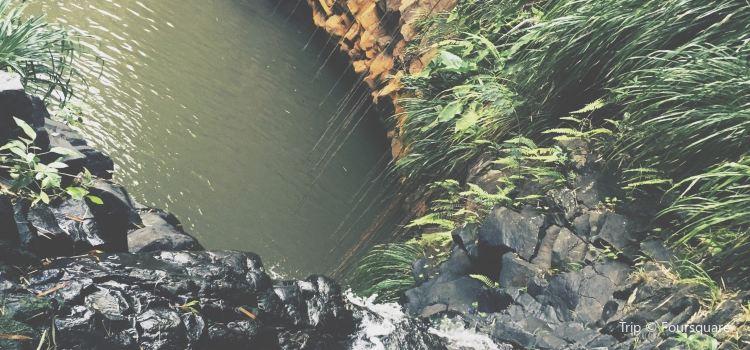 Annandale Falls1