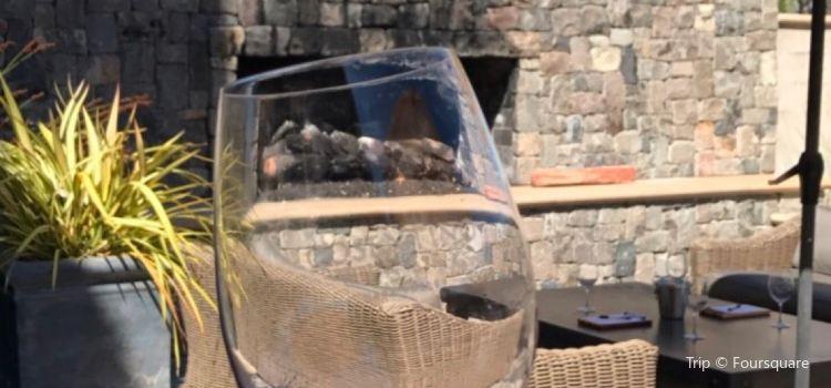 Cosentino Winery2