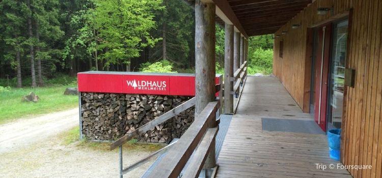 Wildpark Waldhaus Mehlmeisel3