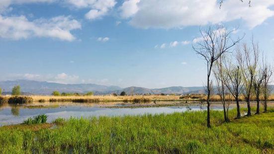大理市羅時江生態濕地