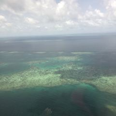 Sunlover Reef Cruises User Photo