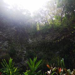 Fern Grotto User Photo