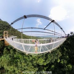 Cow Fish Mouth Glass Bridge User Photo