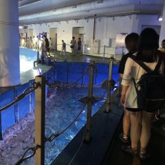 台灣海洋生物博物館用戶圖片
