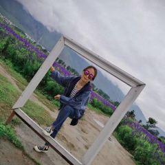 花語牧場用戶圖片