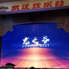 武漢歡樂谷用戶圖片