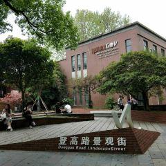 湖南大學用戶圖片