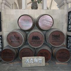張裕摩塞爾十五世酒莊用戶圖片