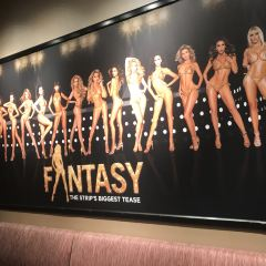 Fantasy Topless Show User Photo