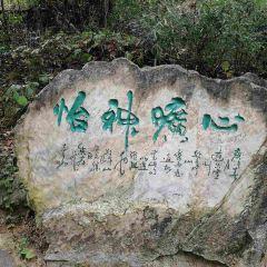 敬亭山用戶圖片
