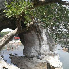 象山景區用戶圖片
