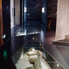 烏蘭察布博物館用戶圖片