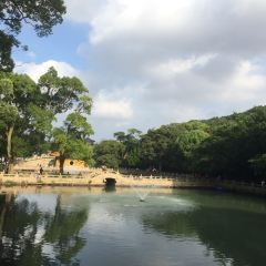 普陀山風景區用戶圖片