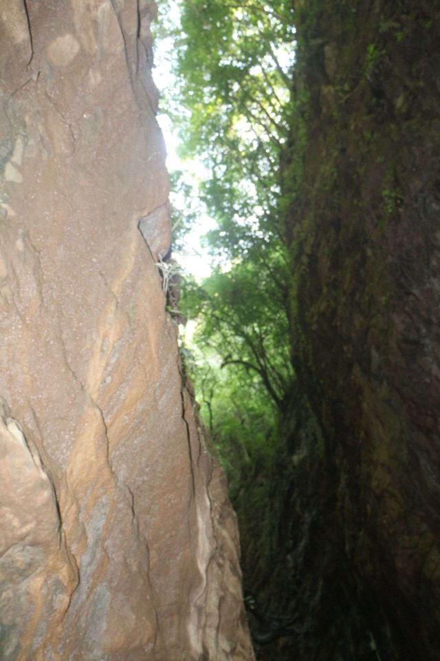 巴山大峽谷